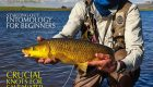 The Complete Fly Fisherman – May 2012
